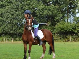 How to find a riding school