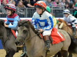 Equestrian events to attend before Christmas!