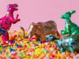 How to throw the best dino themed party!