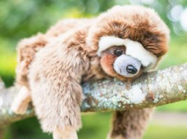 See what our mums think of Posh Paws' BBC Earth soft toys