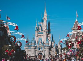 Meet the Disney Princesses…
