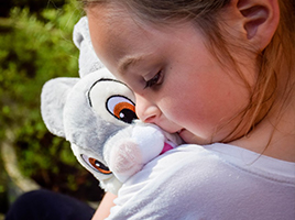 Why do families love the Disney Classics Plush Toy collection?